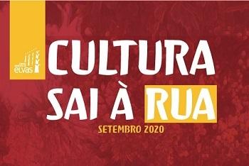 """Câmara Municipal adia iniciativas da """"Cultura Sai à Rua"""""""