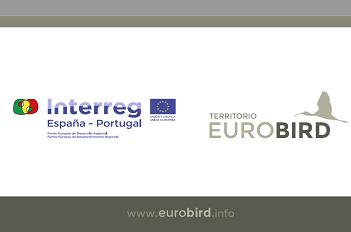 Formação sobre ornitologia no próximo dia 10